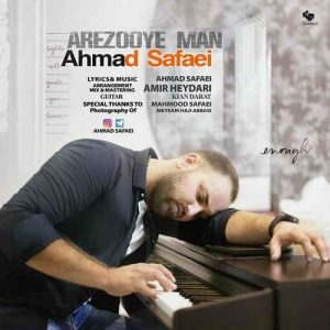 دانلود آهنگ دارم دیوونه میشم از نبود تو احمد صفایی