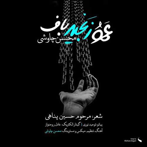 دانلود آهنگ جدید دیوونه کیه از محسن چاوشی