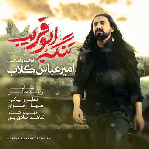دانلود آهنگ گشنه و تشنه و زخمی امیر عباس گلاب
