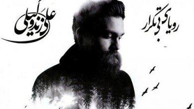 دانلود آهنگ تو آمدی از راه در آن شب بی ماه علی زندوکیلی